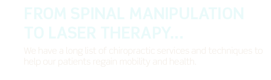 Copy for Oler Chiropractic Services slide.